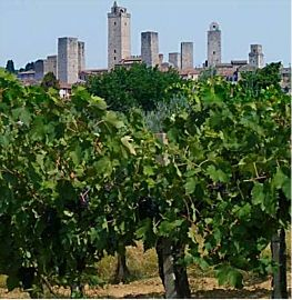 San Gimignano, the town of the towers
